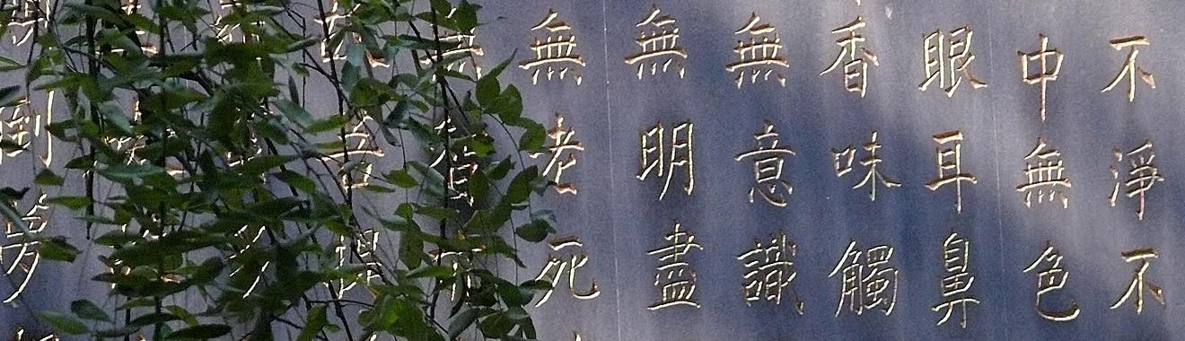Aktuelle Informationen auf der Seite der Praxis für Traditionelle Chinesische Medizin (Akupunktur, Chinesische Kräutertherapie, Tuina-Massage) und Dorn-Therapie von Sabine Oeltjen in Stuttgart