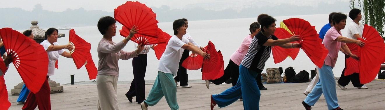 weitere Verfahren, die in der Praxis für Traditionelle Chinesische Medizin (Akupunktur, Chinesische Arzneimitteltherapie, Tuina-Massage) und Dorntherapie von Sabine Oeltjen in Stuttgart angewendet werden